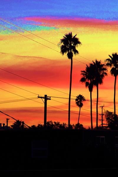 Beach Communit Sunset, Venice, CA, USA